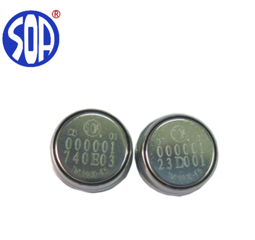 Ibutton Card DS1971